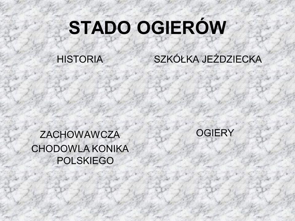 HISTORIA Sierakowskie stado ogierów zostało założone przez Niemców w 1892 roku w celu dostarczenia materiału rozpłodowego dla Wielkiego Księstwa Poznańskiego.