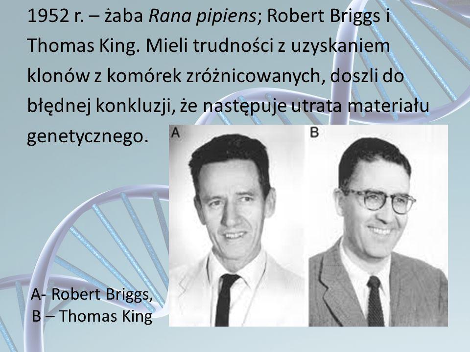 A- Robert Briggs, B – Thomas King 1952 r. – żaba Rana pipiens; Robert Briggs i Thomas King. Mieli trudności z uzyskaniem klonów z komórek zróżnicowany
