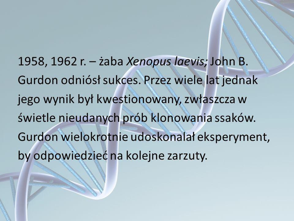 1958, 1962 r. – żaba Xenopus laevis; John B. Gurdon odniósł sukces. Przez wiele lat jednak jego wynik był kwestionowany, zwłaszcza w świetle nieudanyc