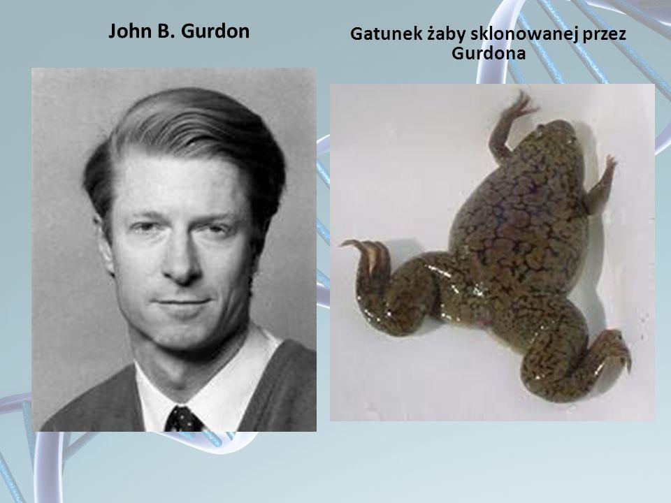 John B. Gurdon Gatunek żaby sklonowanej przez Gurdona