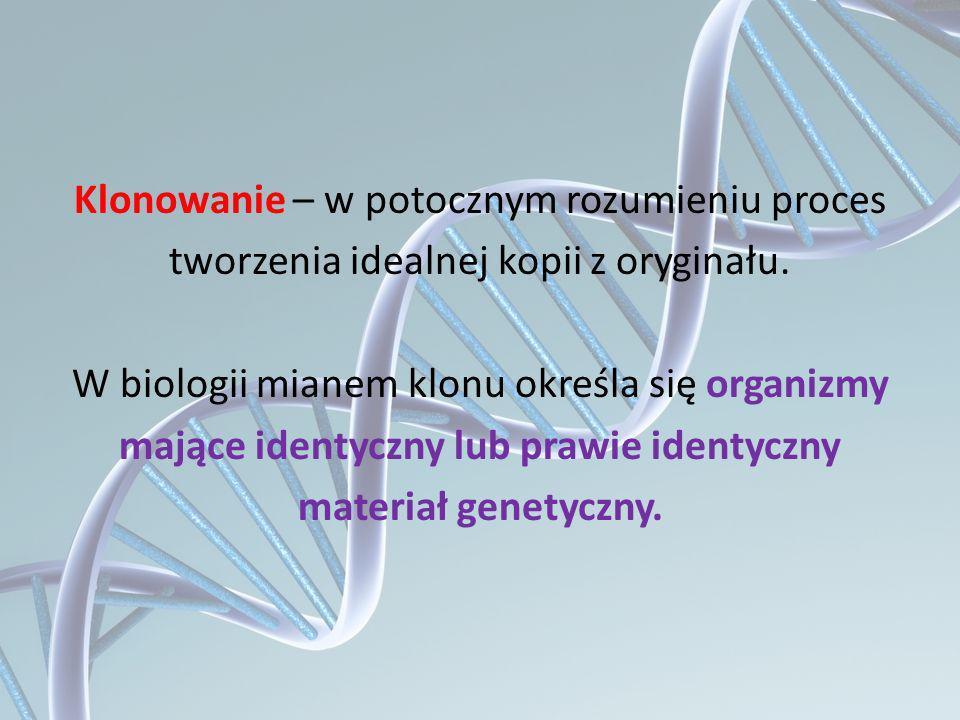 Klonowanie – w potocznym rozumieniu proces tworzenia idealnej kopii z oryginału. W biologii mianem klonu określa się organizmy mające identyczny lub p
