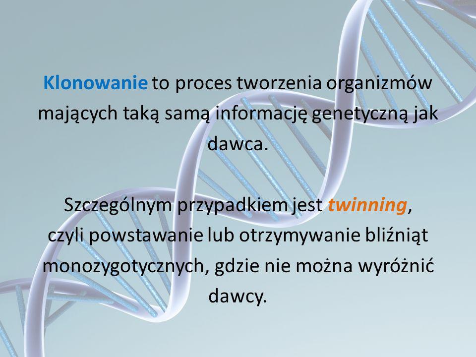 Klonowanie to proces tworzenia organizmów mających taką samą informację genetyczną jak dawca. Szczególnym przypadkiem jest twinning, czyli powstawanie