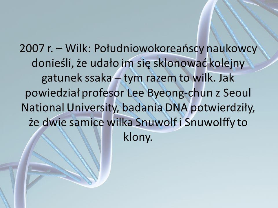 2007 r. – Wilk: Południowokoreańscy naukowcy donieśli, że udało im się sklonować kolejny gatunek ssaka – tym razem to wilk. Jak powiedział profesor Le
