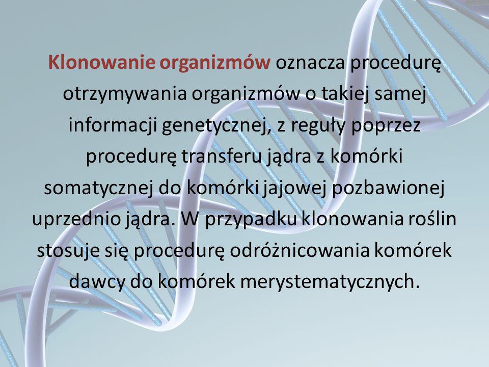 Klonowanie organizmów oznacza procedurę otrzymywania organizmów o takiej samej informacji genetycznej, z reguły poprzez procedurę transferu jądra z ko