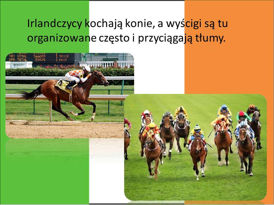 Irlandczycy kochają konie, a wyścigi są tu organizowane często i przyciągają tłumy.