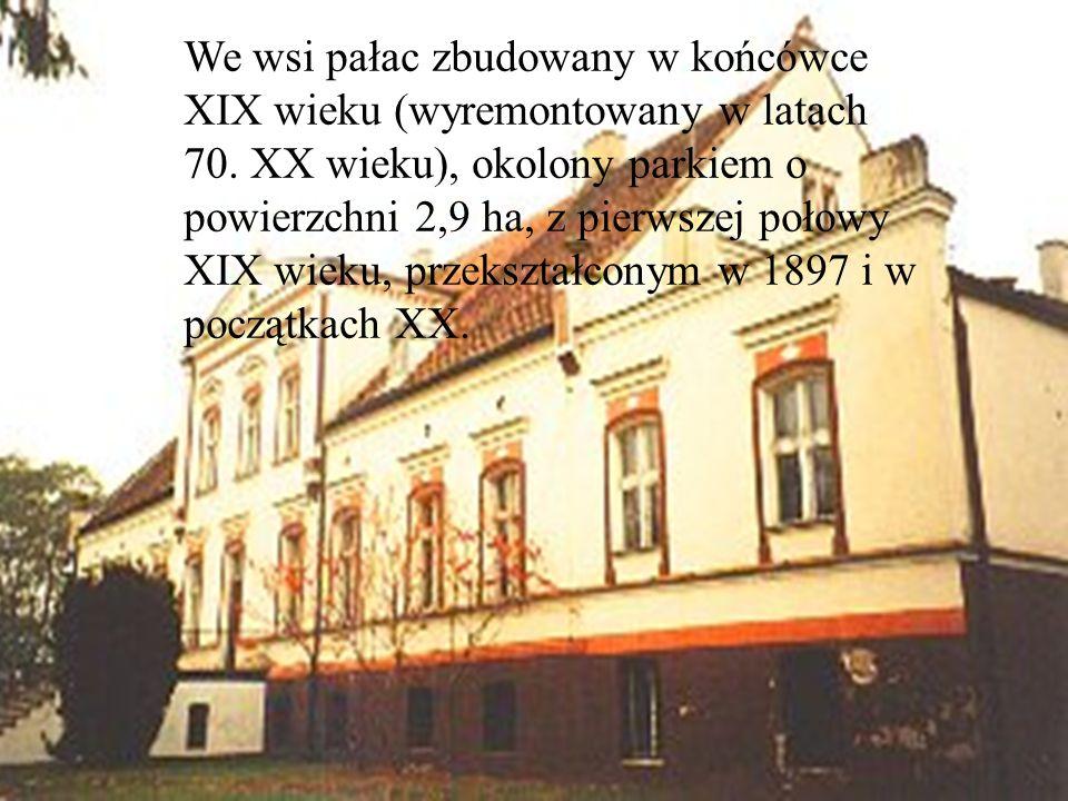We wsi pałac zbudowany w końcówce XIX wieku (wyremontowany w latach 70. XX wieku), okolony parkiem o powierzchni 2,9 ha, z pierwszej połowy XIX wieku,
