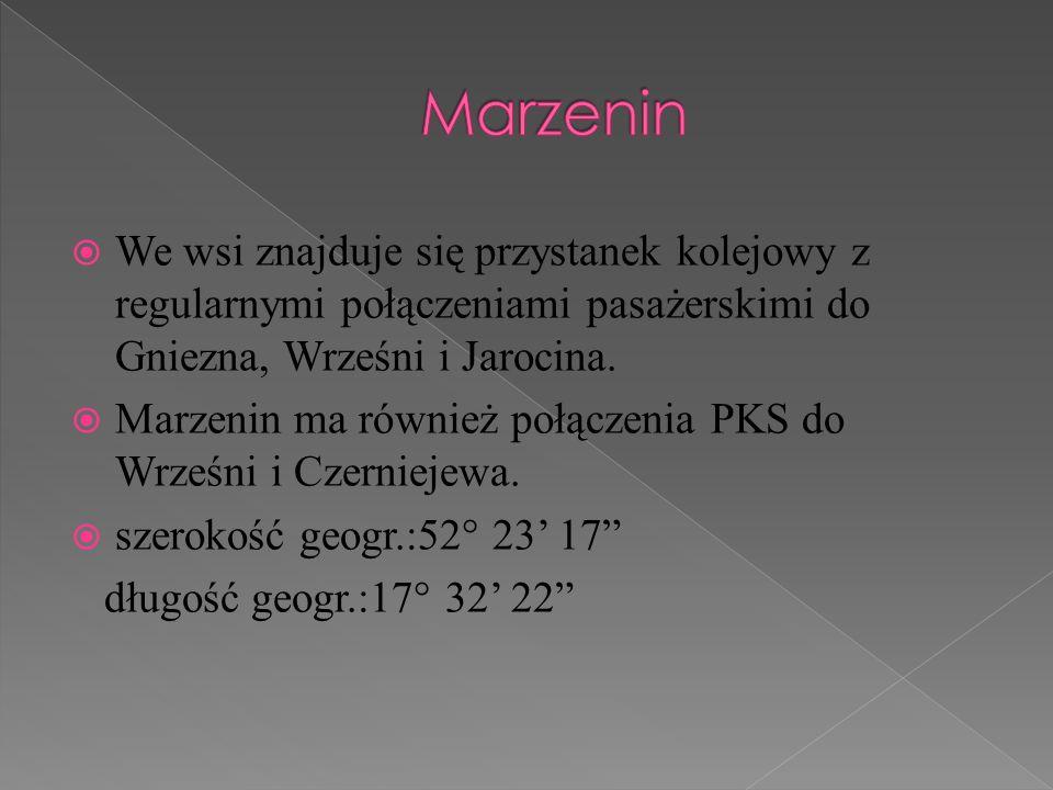 We wsi znajduje się przystanek kolejowy z regularnymi połączeniami pasażerskimi do Gniezna, Wrześni i Jarocina. Marzenin ma również połączenia PKS do