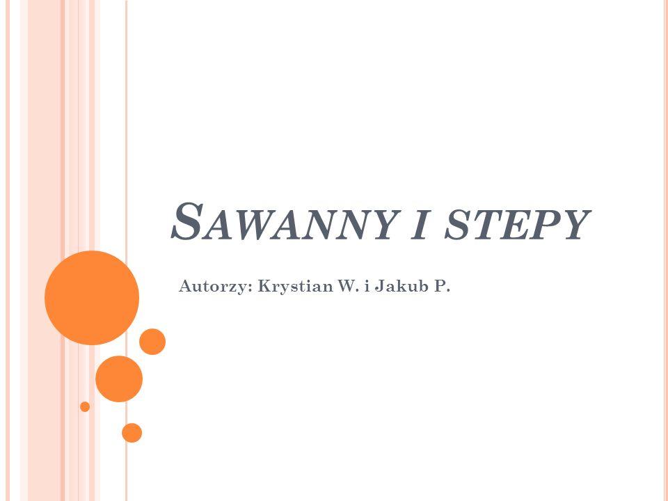 S AWANNY I STEPY Autorzy: Krystian W. i Jakub P.