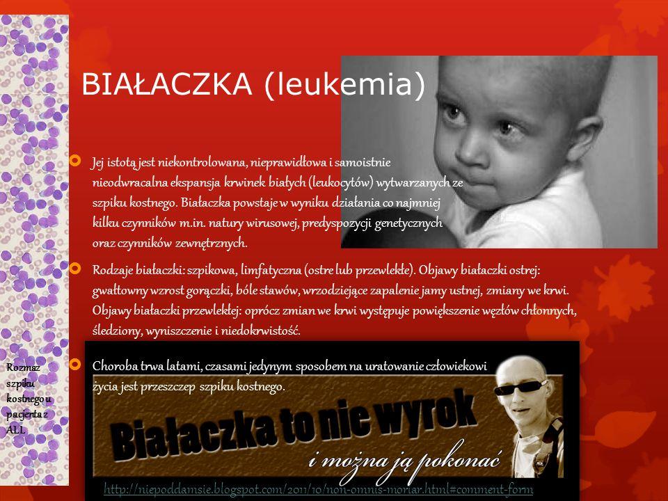 BIAŁACZKA (leukemia) Jej istotą jest niekontrolowana, nieprawidłowa i samoistnie nieodwracalna ekspansja krwinek białych (leukocytów) wytwarzanych ze