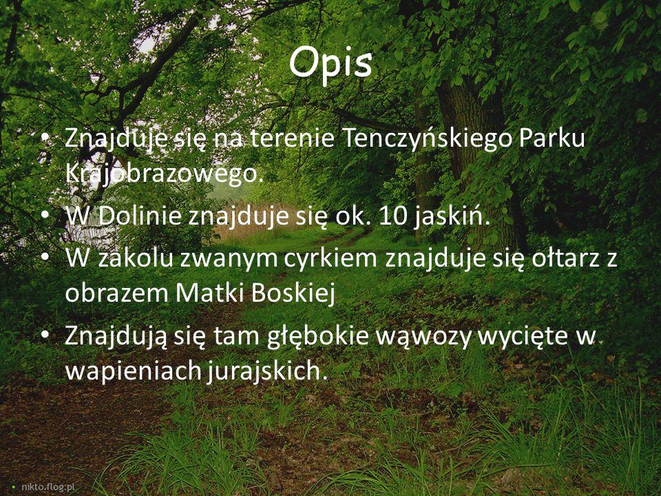 Opis Znajduje się na terenie Tenczyńskiego Parku Krajobrazowego. W Dolinie znajduje się ok. 10 jaskiń. W zakolu zwanym cyrkiem znajduje się ołtarz z o