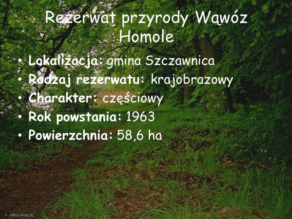 Rezerwat przyrody Wąwóz Homole Lokalizacja: gmina Szczawnica Rodzaj rezerwatu: krajobrazowy Charakter: częściowy Rok powstania: 1963 Powierzchnia: 58,