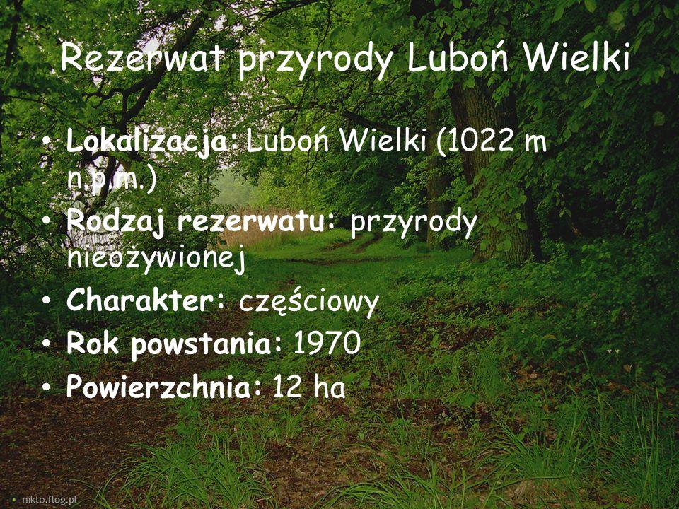 Rezerwat przyrody Luboń Wielki Lokalizacja: Luboń Wielki (1022 m n.p.m.) Rodzaj rezerwatu: przyrody nieożywionej Charakter: częściowy Rok powstania: 1