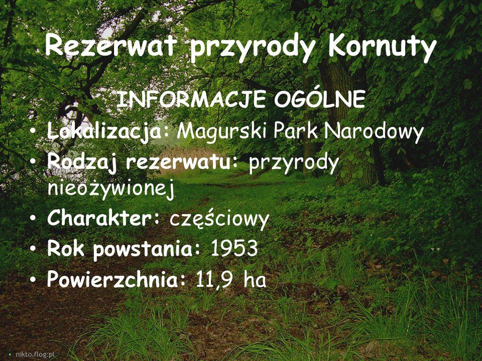 Rezerwat przyrody Kornuty INFORMACJE OGÓLNE Lokalizacja: Magurski Park Narodowy Rodzaj rezerwatu: przyrody nieożywionej Charakter: częściowy Rok powst