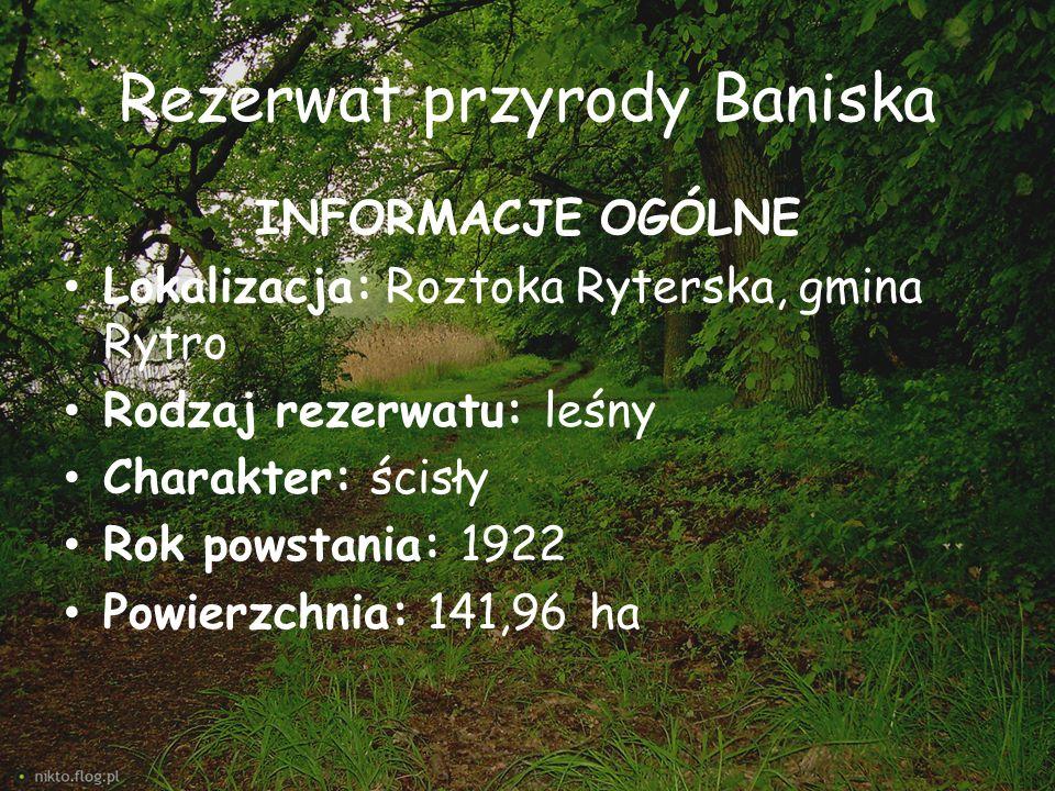 Rezerwat przyrody Baniska INFORMACJE OGÓLNE Lokalizacja: Roztoka Ryterska, gmina Rytro Rodzaj rezerwatu: leśny Charakter: ścisły Rok powstania: 1922 P