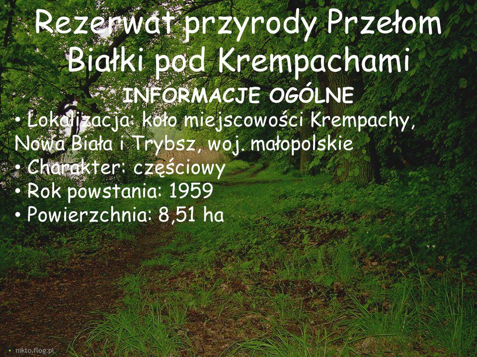 Rezerwat przyrody Przełom Białki pod Krempachami INFORMACJE OGÓLNE Lokalizacja: koło miejscowości Krempachy, Nowa Biała i Trybsz, woj. małopolskie Cha