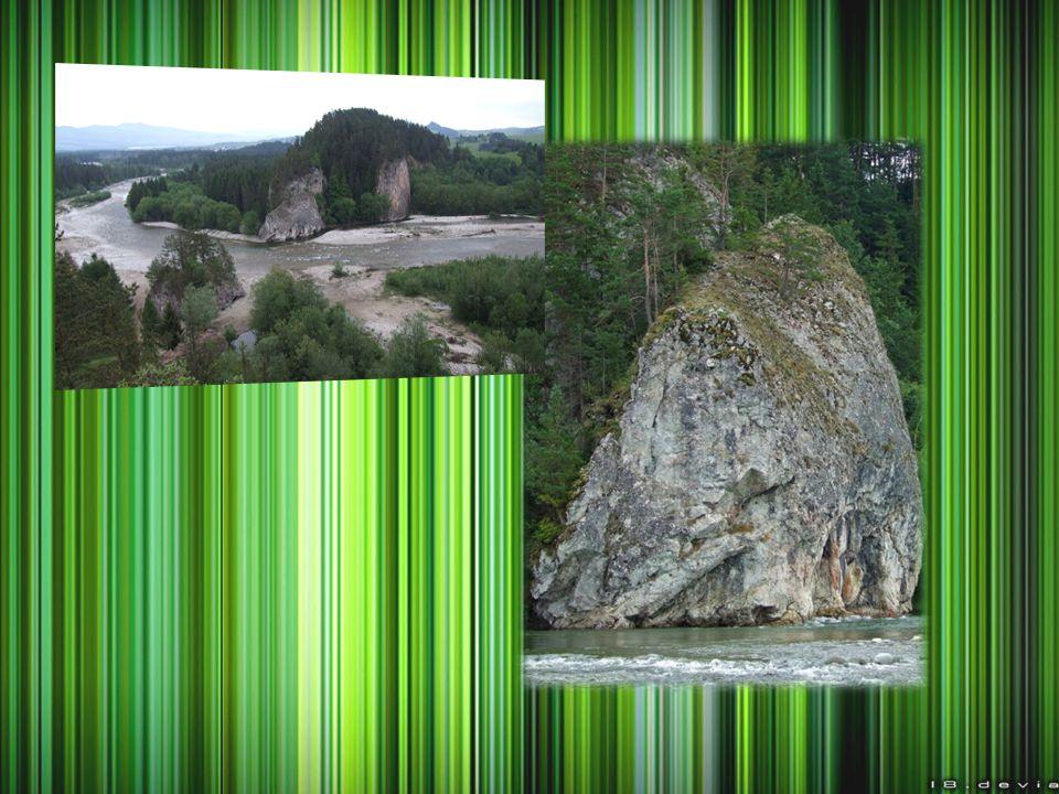 Rezerwat przyrody Madohora INFORMACJE OGÓLNE Lokalizacja: teren Parku Krajobrazowego Beskidu Małego, partie szczytowe oraz zbocza Łamanej Skały (teren gmin: Ślemień (woj.