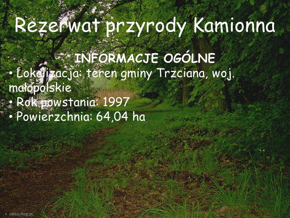 Rezerwat przyrody Kamionna INFORMACJE OGÓLNE Lokalizacja: teren gminy Trzciana, woj. małopolskie Rok powstania: 1997 Powierzchnia: 64,04 ha