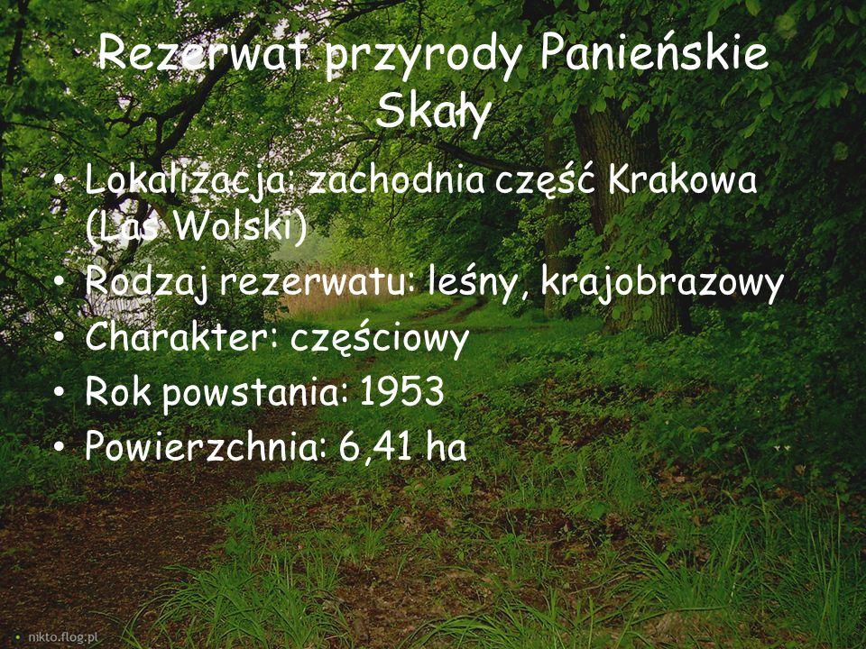 Rezerwat przyrody Panieńskie Skały Lokalizacja: zachodnia część Krakowa (Las Wolski) Rodzaj rezerwatu: leśny, krajobrazowy Charakter: częściowy Rok po