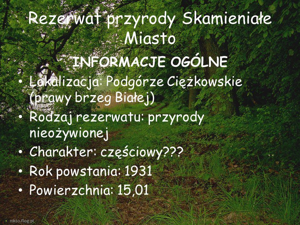 Rezerwat przyrody Skamieniałe Miasto INFORMACJE OGÓLNE Lokalizacja: Podgórze Ciężkowskie (prawy brzeg Białej) Rodzaj rezerwatu: przyrody nieożywionej