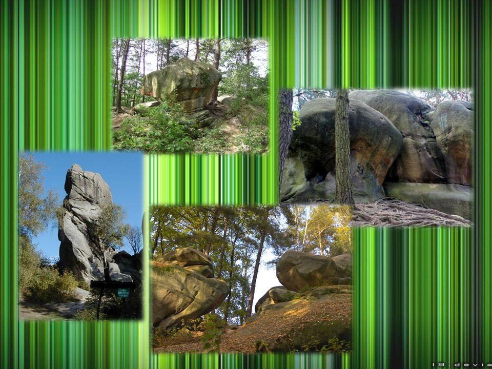 Rezerwat przyrody Kamień-Grzyb INFORMACJE OGÓLNE Lokalizacja: Połom Duży Rodzaj rezerwatu: przyrody nieożywionej Charakter: ścisły Rok powstania: 1962 Powierzchnia: 1,83 ha