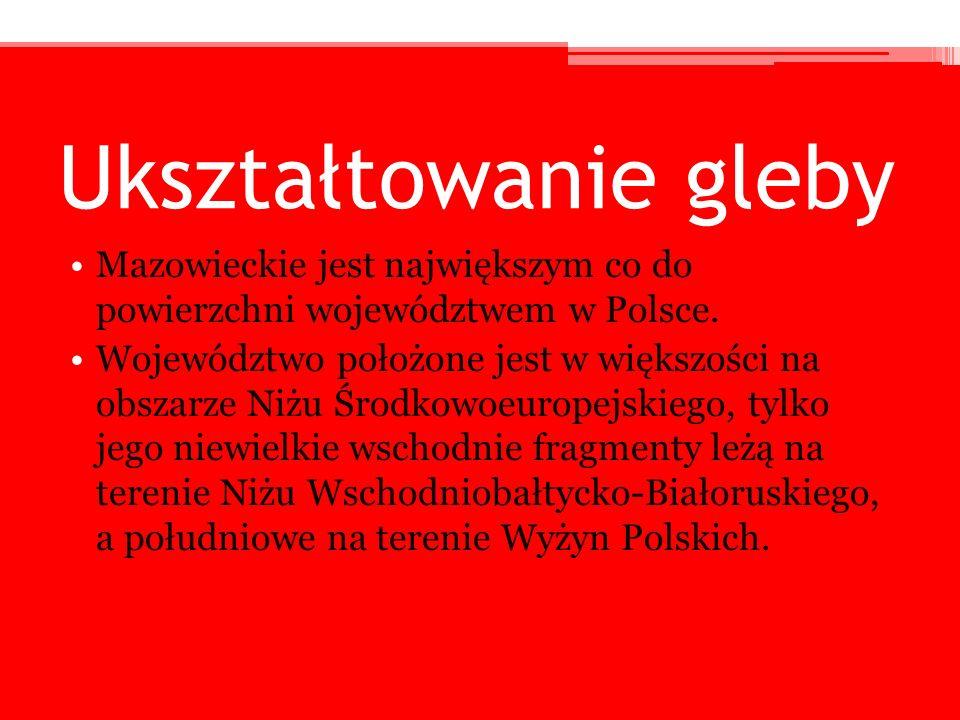 Ukształtowanie gleby Mazowieckie jest największym co do powierzchni województwem w Polsce. Województwo położone jest w większości na obszarze Niżu Śro