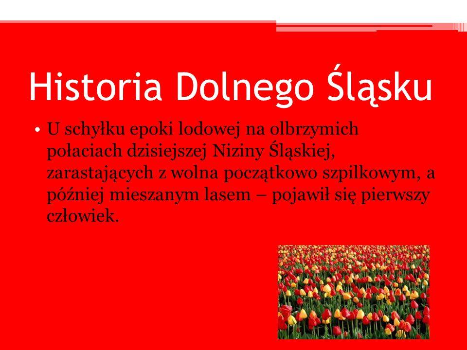 Historia Dolnego Śląsku U schyłku epoki lodowej na olbrzymich połaciach dzisiejszej Niziny Śląskiej, zarastających z wolna początkowo szpilkowym, a pó