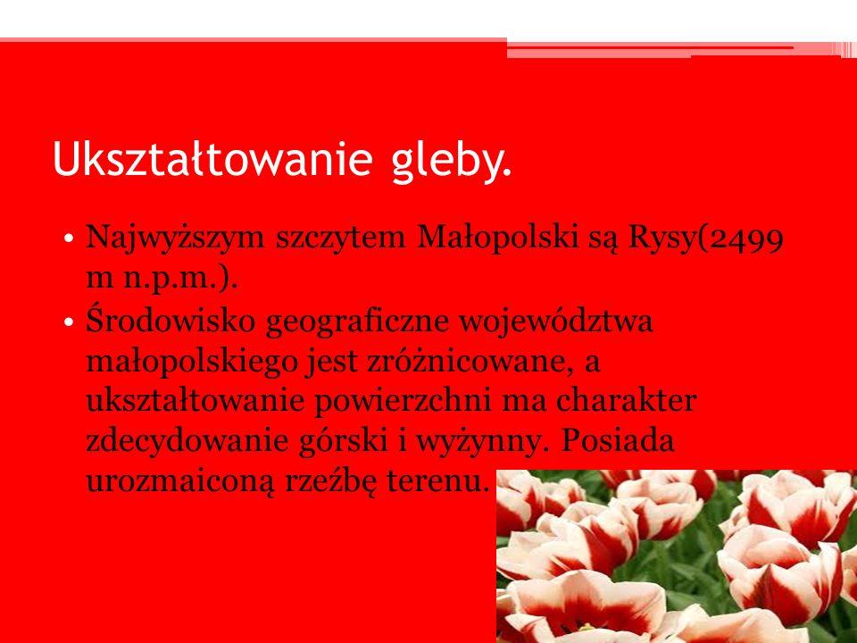 Ukształtowanie gleby. Najwyższym szczytem Małopolski są Rysy(2499 m n.p.m.). Środowisko geograficzne województwa małopolskiego jest zróżnicowane, a uk