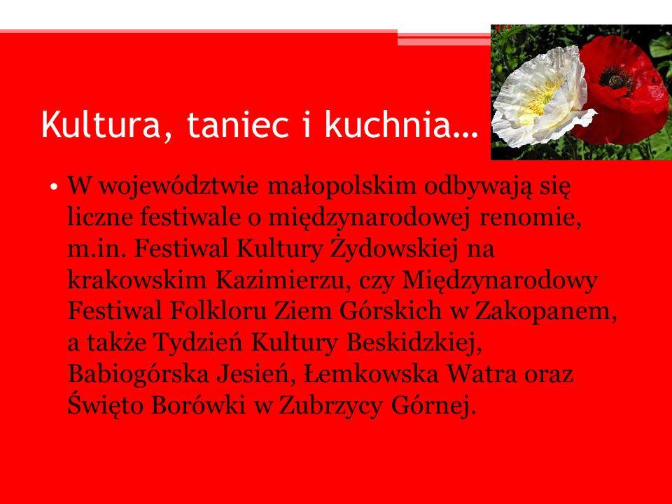 Kultura, taniec i kuchnia… W województwie małopolskim odbywają się liczne festiwale o międzynarodowej renomie, m.in. Festiwal Kultury Żydowskiej na kr