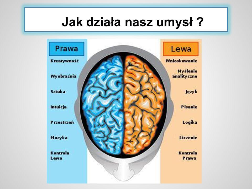 Jak działa nasz umysł ?