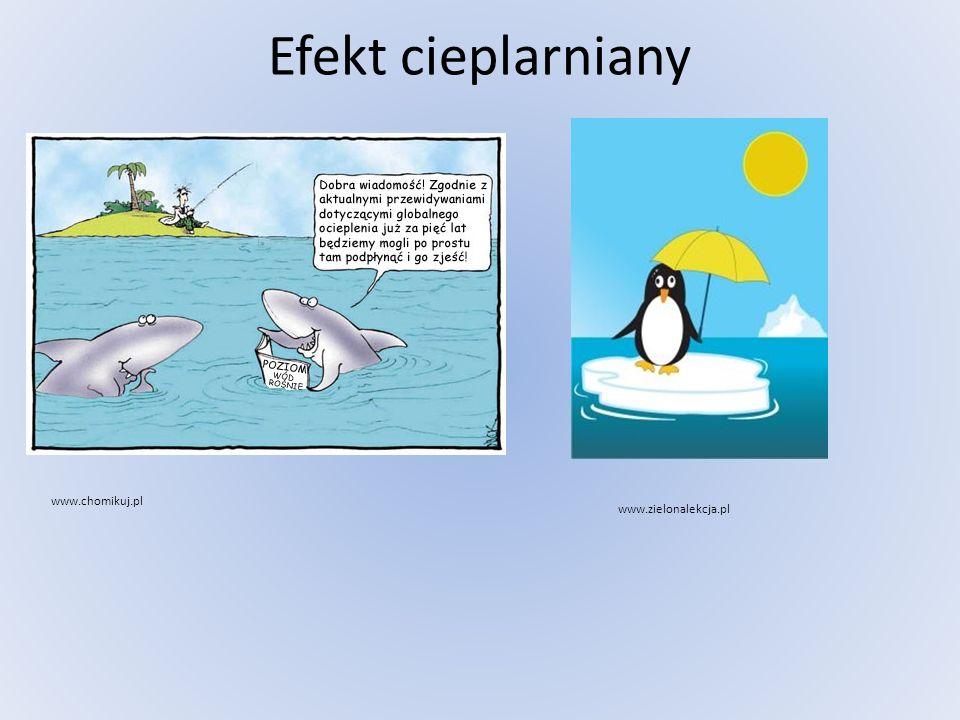 Efekt cieplarniany www.chomikuj.pl www.zielonalekcja.pl