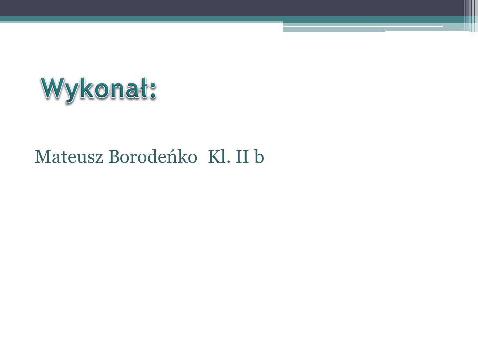 Mateusz Borodeńko Kl. II b