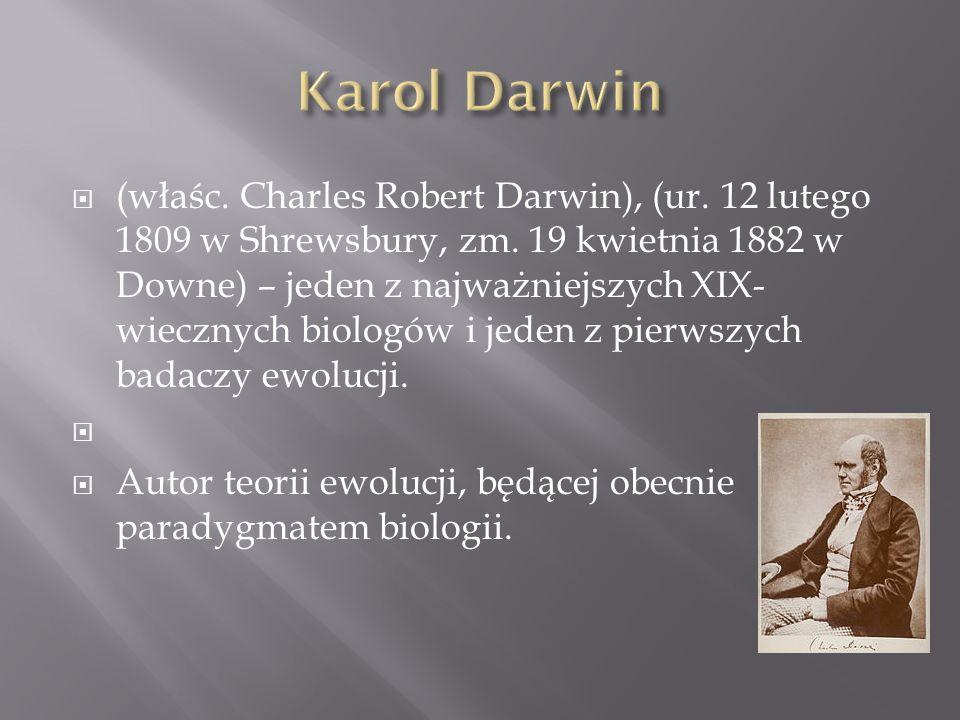 (właśc. Charles Robert Darwin), (ur. 12 lutego 1809 w Shrewsbury, zm. 19 kwietnia 1882 w Downe) – jeden z najważniejszych XIX- wiecznych biologów i je