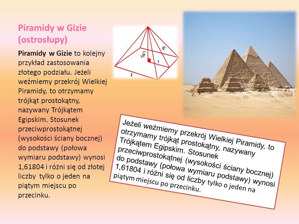 Piramidy w Gizie (ostrosłupy) Piramidy w Gizie to kolejny przykład zastosowania złotego podziału. Jeżeli weźmiemy przekrój Wielkiej Piramidy, to otrzy