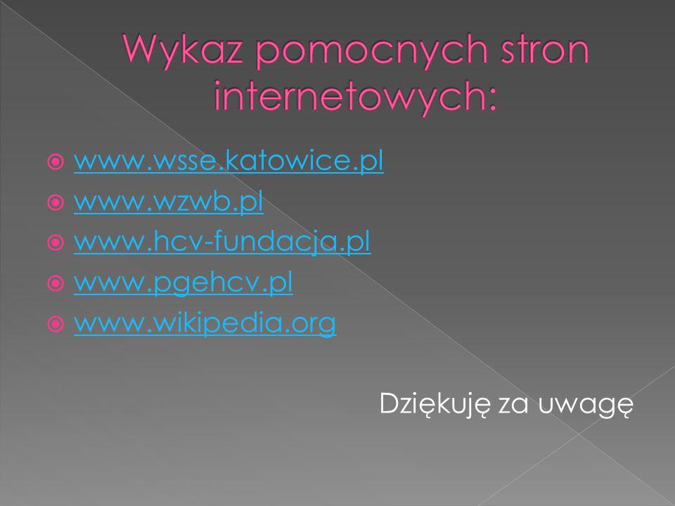 www.wsse.katowice.pl www.wzwb.pl www.hcv-fundacja.pl www.pgehcv.pl www.wikipedia.org Dziękuję za uwagę
