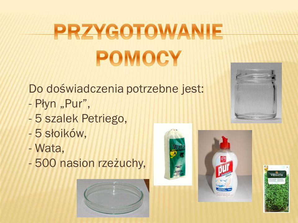 Do doświadczenia potrzebne jest: - Płyn Pur, - 5 szalek Petriego, - 5 słoików, - Wata, - 500 nasion rzeżuchy,