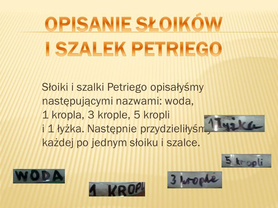 Słoiki i szalki Petriego opisałyśmy następującymi nazwami: woda, 1 kropla, 3 krople, 5 kropli i 1 łyżka. Następnie przydzieliłyśmy każdej po jednym sł