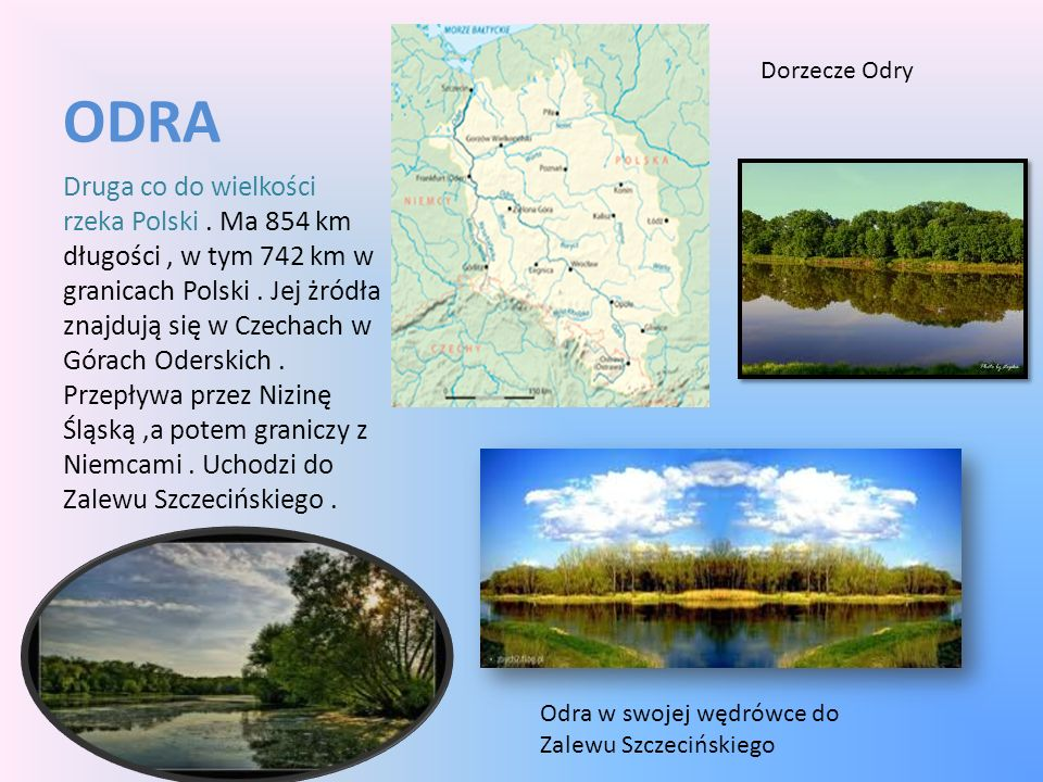 ODRA Druga co do wielkości rzeka Polski. Ma 854 km długości, w tym 742 km w granicach Polski. Jej żródła znajdują się w Czechach w Górach Oderskich. P