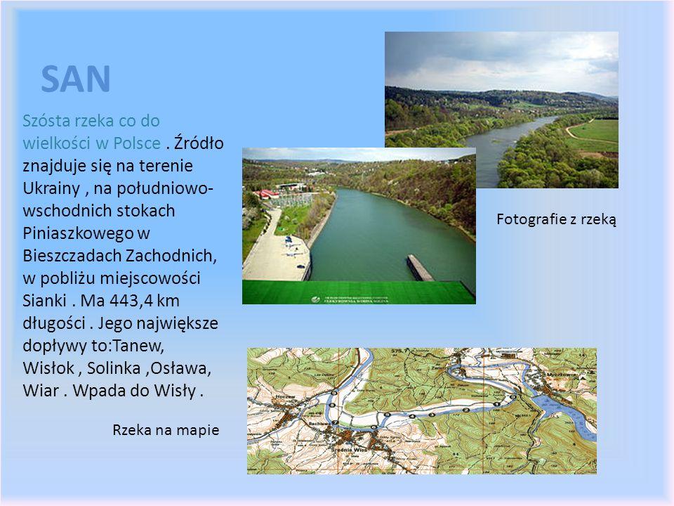 SAN Szósta rzeka co do wielkości w Polsce. Źródło znajduje się na terenie Ukrainy, na południowo- wschodnich stokach Piniaszkowego w Bieszczadach Zach