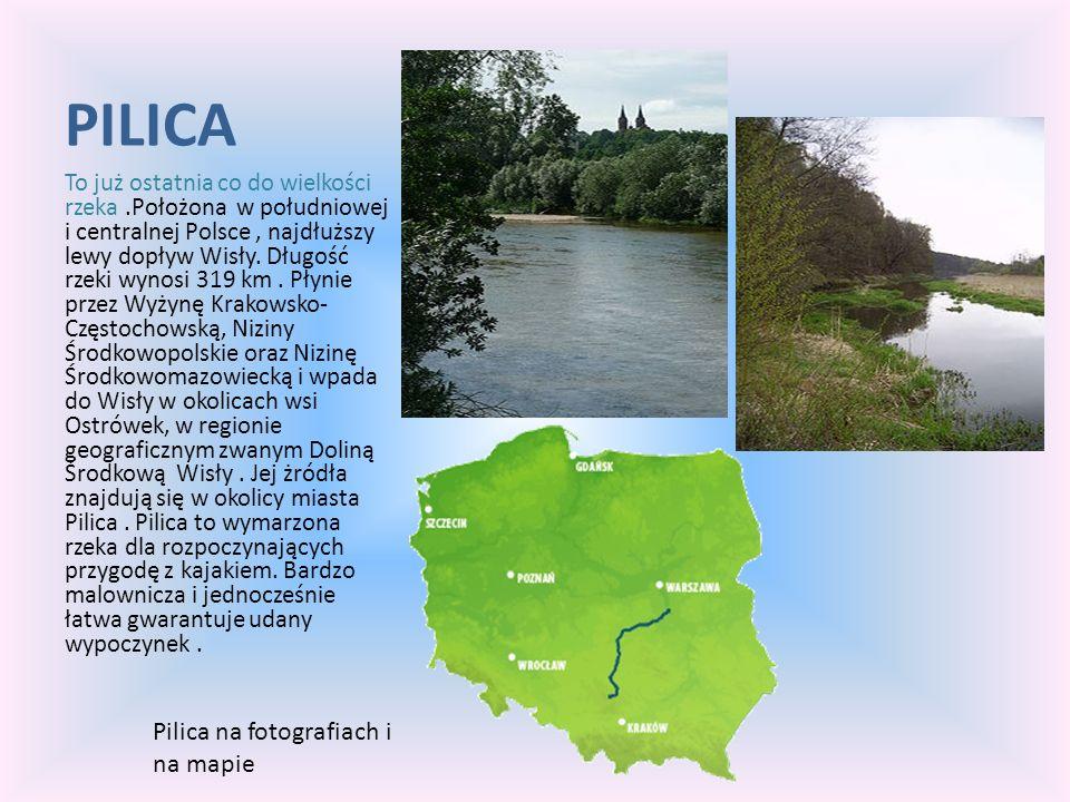 PILICA To już ostatnia co do wielkości rzeka.Położona w południowej i centralnej Polsce, najdłuższy lewy dopływ Wisły. Długość rzeki wynosi 319 km. Pł