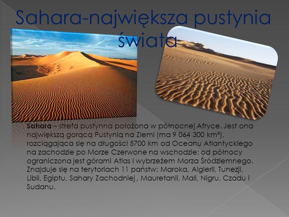 Sahara – strefa pustynna położona w północnej Afryce. Jest ona największą gorącą Pustynią na Ziemi (ma 9 064 300 km²), rozciągająca się na długości 57