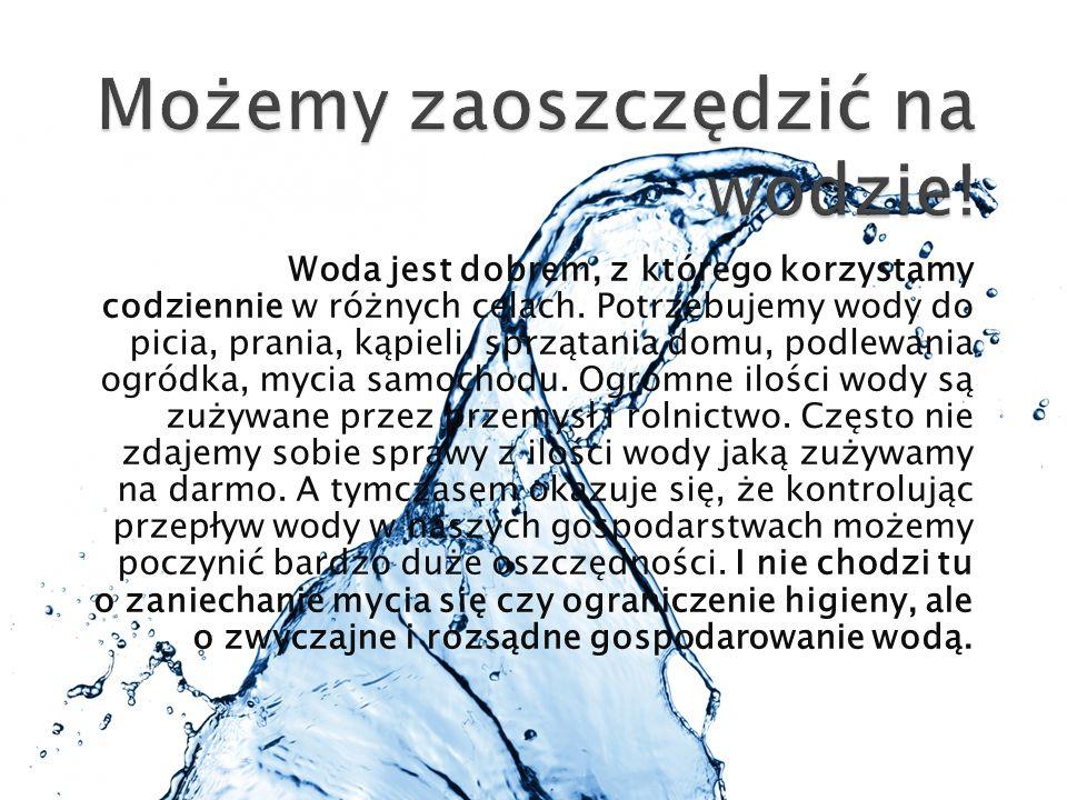 Woda jest dobrem, z którego korzystamy codziennie w różnych celach. Potrzebujemy wody do picia, prania, kąpieli, sprzątania domu, podlewania ogródka,