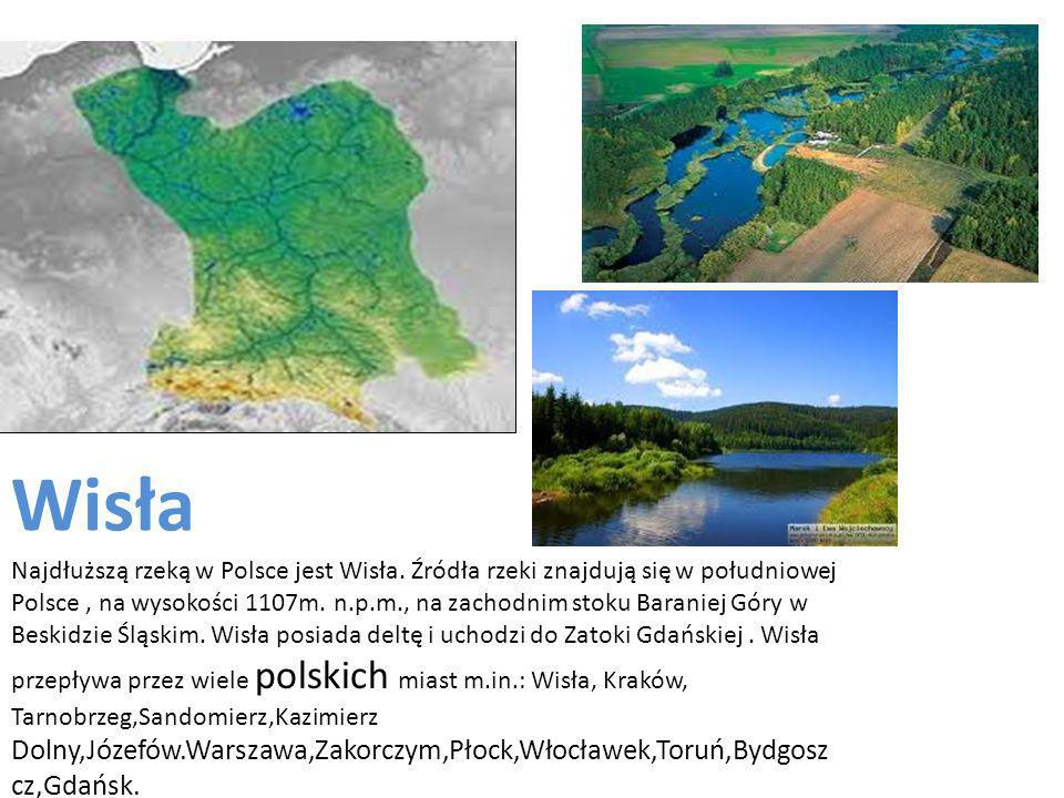 Wisła Najdłuższą rzeką w Polsce jest Wisła.