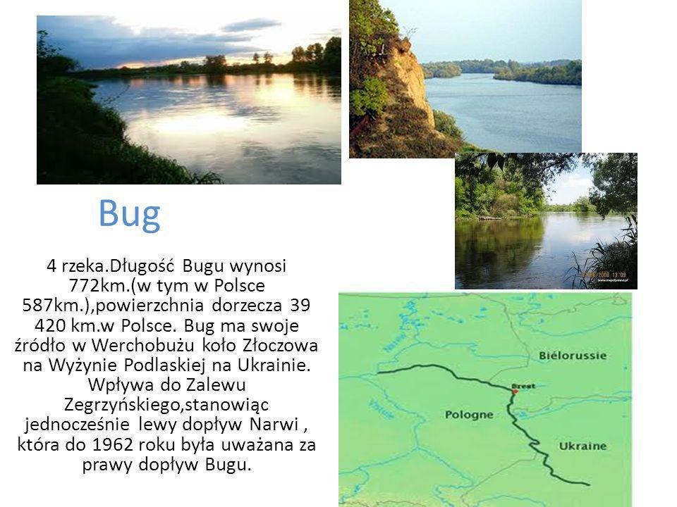 Piątą rzeką co do długości jest Narew.