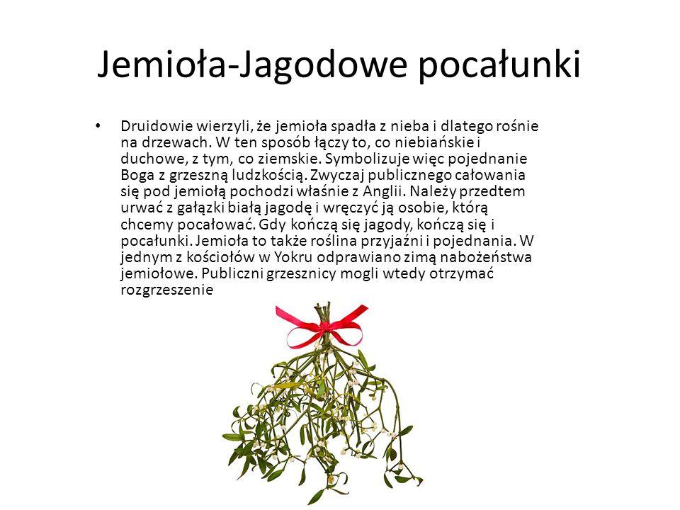 Jemioła-Jagodowe pocałunki Druidowie wierzyli, że jemioła spadła z nieba i dlatego rośnie na drzewach. W ten sposób łączy to, co niebiańskie i duchowe
