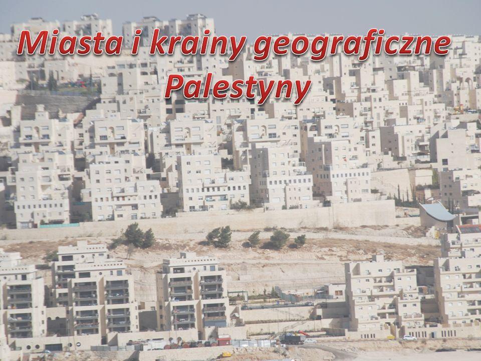 Palestyna- krainy geograficzne Palestyna dzieli się na trzy krainy geograficzne.
