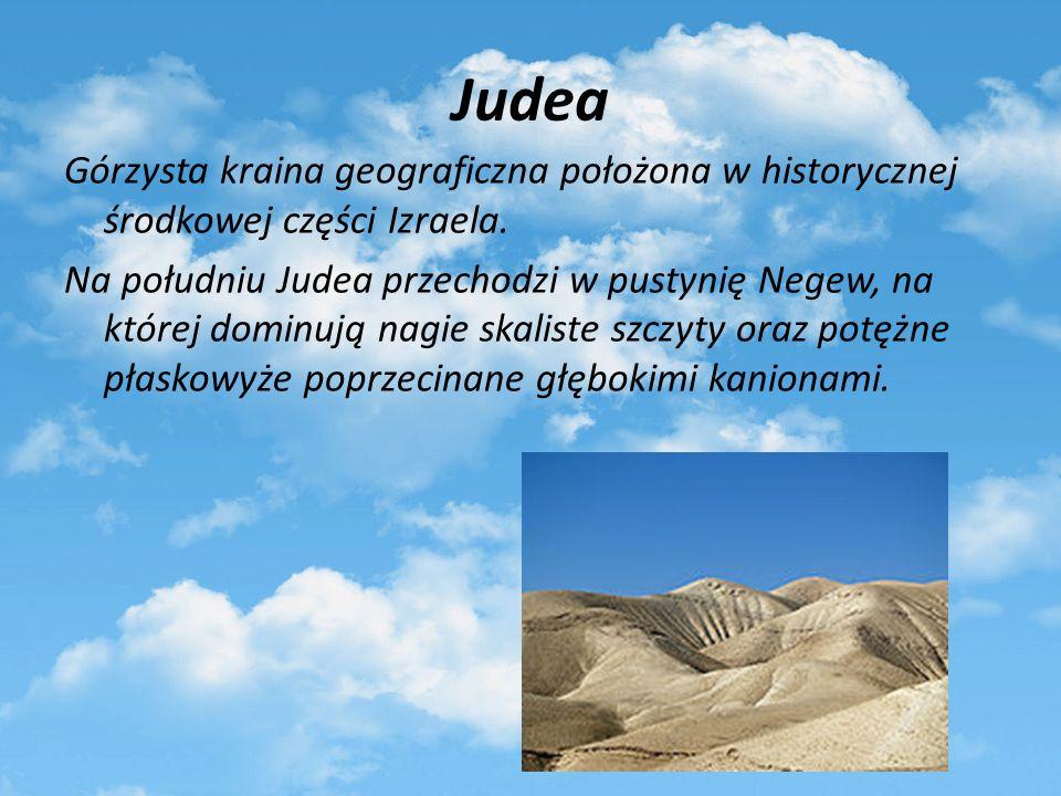 Judea Górzysta kraina geograficzna położona w historycznej środkowej części Izraela. Na południu Judea przechodzi w pustynię Negew, na której dominują