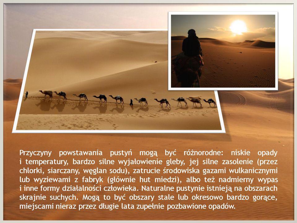 Przyczyny powstawania pustyń mogą być różnorodne: niskie opady i temperatury, bardzo silne wyjałowienie gleby, jej silne zasolenie (przez chlorki, sia
