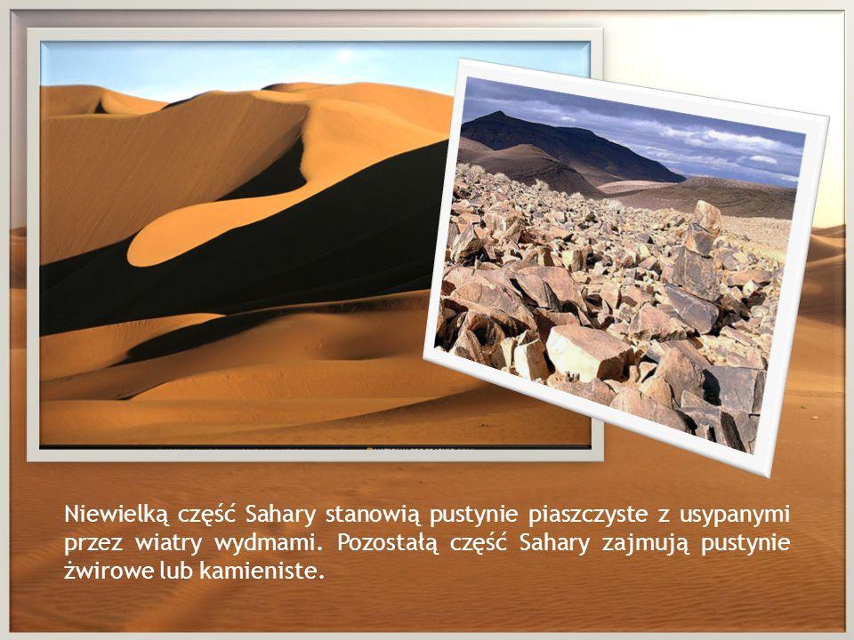 Niewielką część Sahary stanowią pustynie piaszczyste z usypanymi przez wiatry wydmami. Pozostałą część Sahary zajmują pustynie żwirowe lub kamieniste.