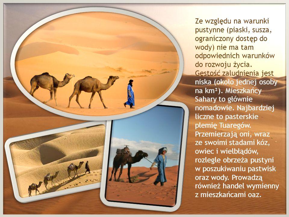 Ze względu na warunki pustynne (piaski, susza, ograniczony dostęp do wody) nie ma tam odpowiednich warunków do rozwoju życia. Gęstość zaludnienia jest