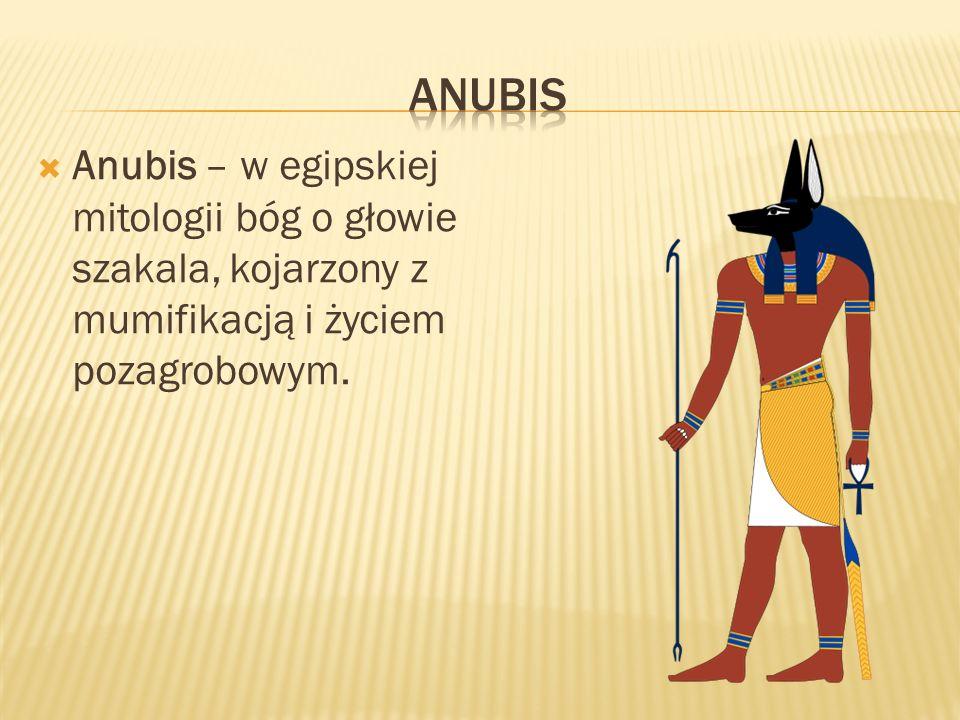 Anubis – w egipskiej mitologii bóg o głowie szakala, kojarzony z mumifikacją i życiem pozagrobowym.
